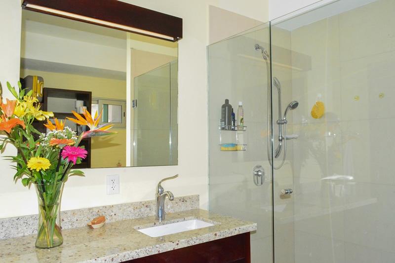 Baño Condominio amueblado en venta Living 3.14 Nuevo Vallarta