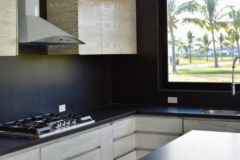 Parrilla cocina Casa en venta Residencial Los Tigres Nuevo Vallarta