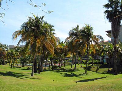 Campo de Golf Desarrollo Península Golf Condominio en venta, El Tigre, Nuevo Vallarta, Nayarit, México