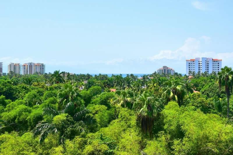 Vista al mar Departamento en venta Nuevo Vallarta 3.14 Living